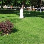 modern garden design 8